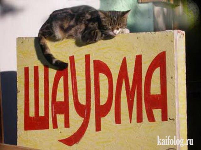 http://kaifolog.ru/uploads/posts/2011-05/1306401600_044.jpg