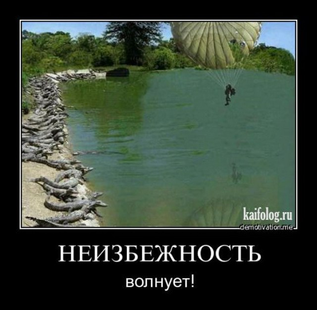 Демотиваторы-86 (40 фото)