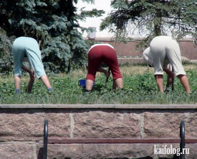 Приколы дня по-русски (90 фото)