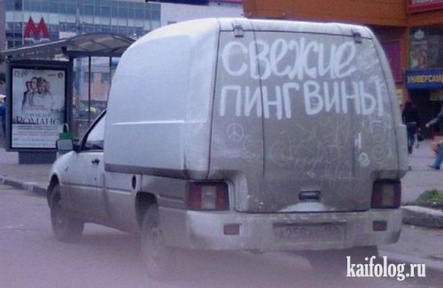 Прикольные надписи на машинах (50 фото)