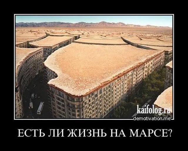 фото приколы на аву: