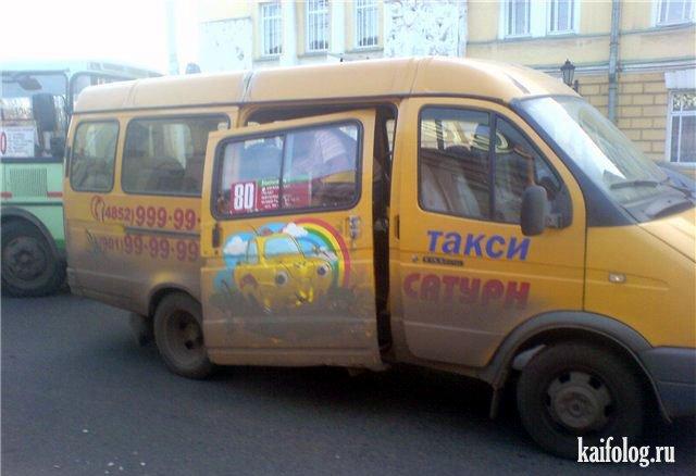 козы смешные истории в маршрутном такси род