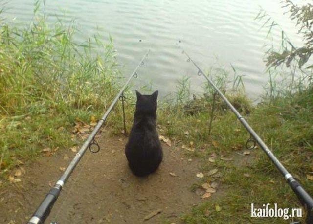 что с собой на рыбалку 100 к 1 ответ