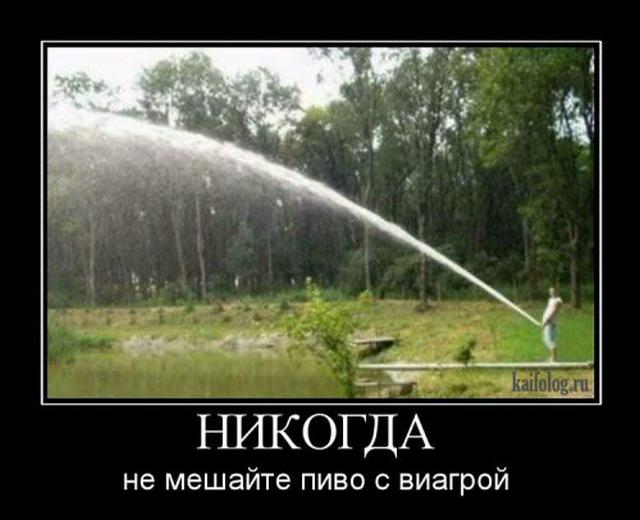 Демотиваторы - 100 (30 фото)