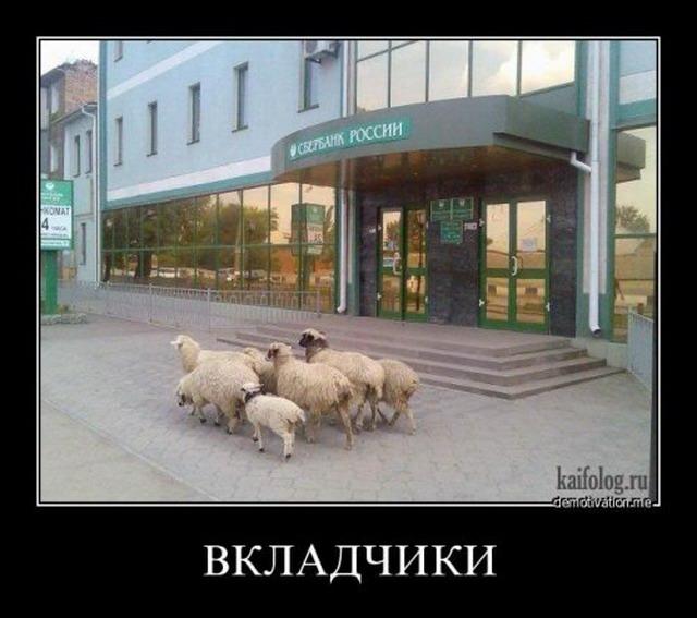 ПриватБанк открыл продажу долларов в Приват24 - Цензор.НЕТ 6413