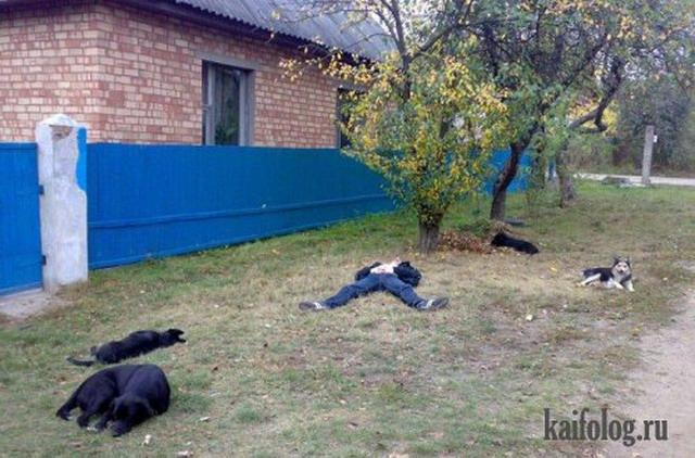 Деревенские приколы (45 фото)