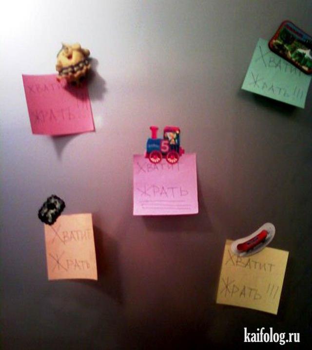 Приколы про холодильники (35 фото)