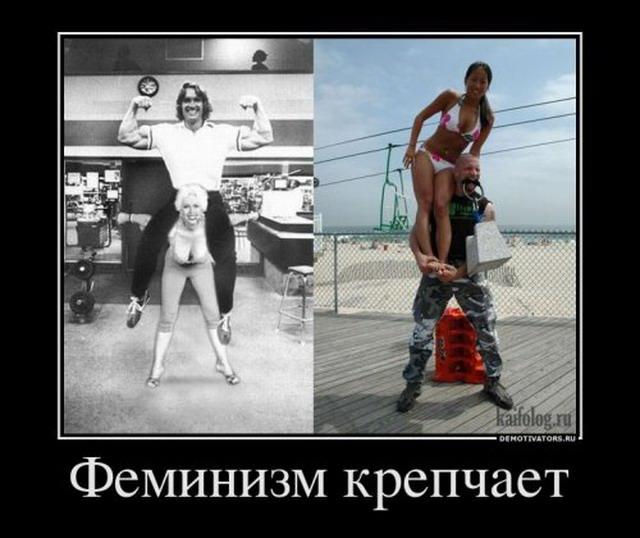 Демотиваторы - 112 (45 фото)