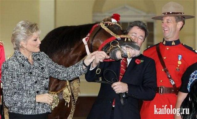 Фотоподборка недели (28 ноября - 4 декабря 2011)