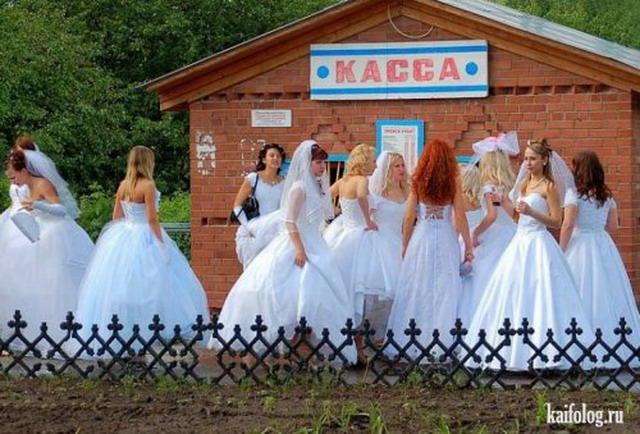 Чисто русские фото года (140 фото)