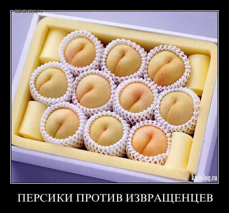 училища попал демотиваторы с пирогами продукт