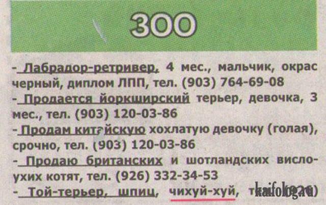 Маразмы России -128 (105 фото)