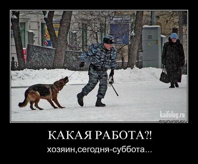 Чисто русские демотиваторы - 90 (45 фото)