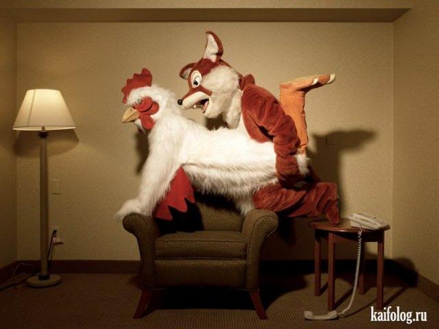Фотоподборка недели (6 - 12 февраля 2012)
