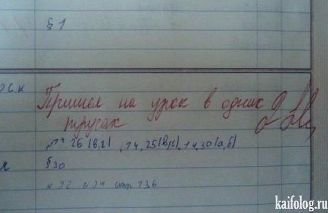Записи в школьных дневниках (15 фото)