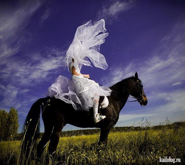 Фотоподборка недели (20 - 26 февраля 2012)