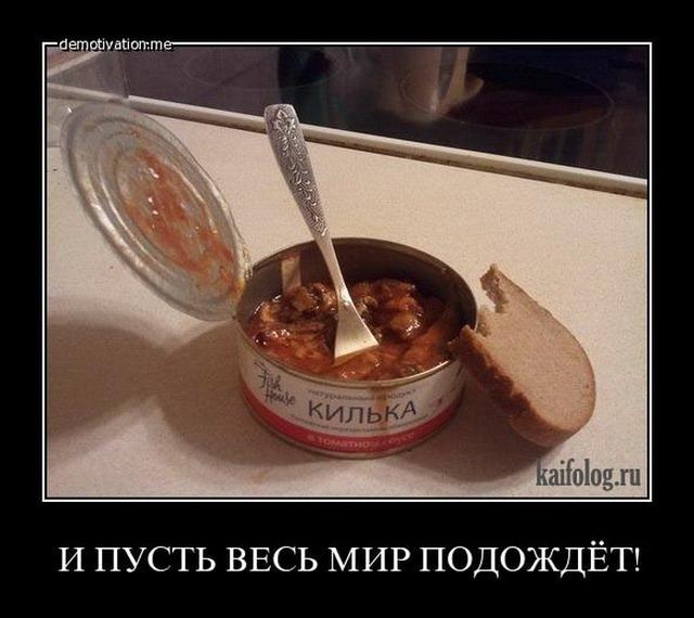 Чисто русские демотиваторы - 92 (55 фото)