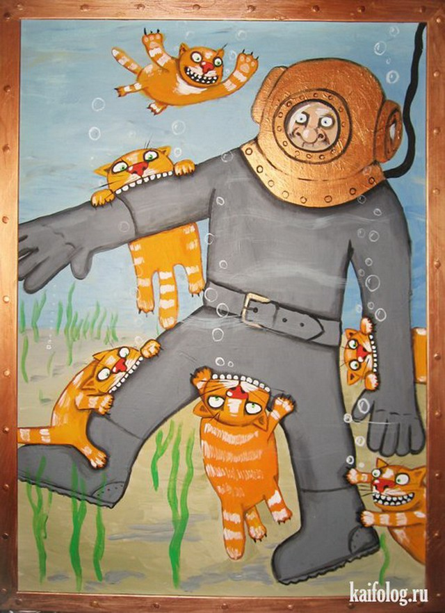 Картинки морской котик