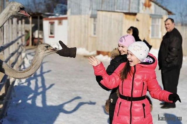 Фотоподборка недели (4 - 11 марта 2012)