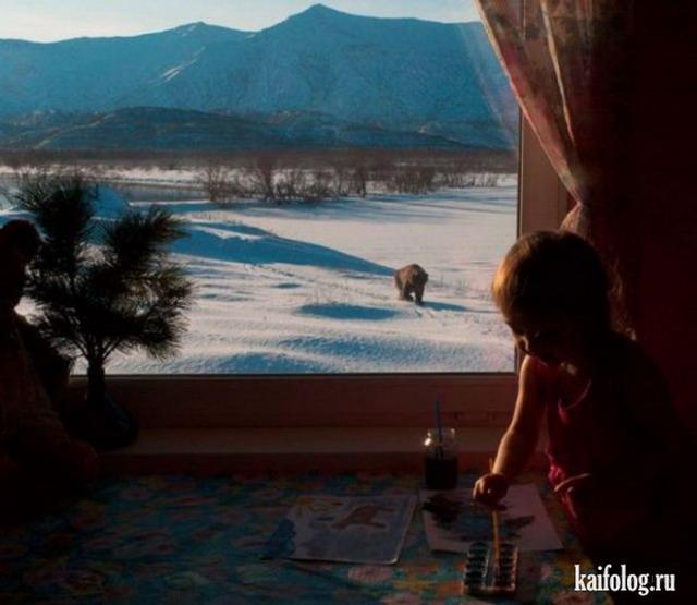 Фотоподборка недели (9 - 15 апреля 2012)
