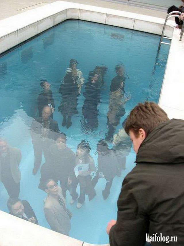 Приколы про бассейн (45 фото)