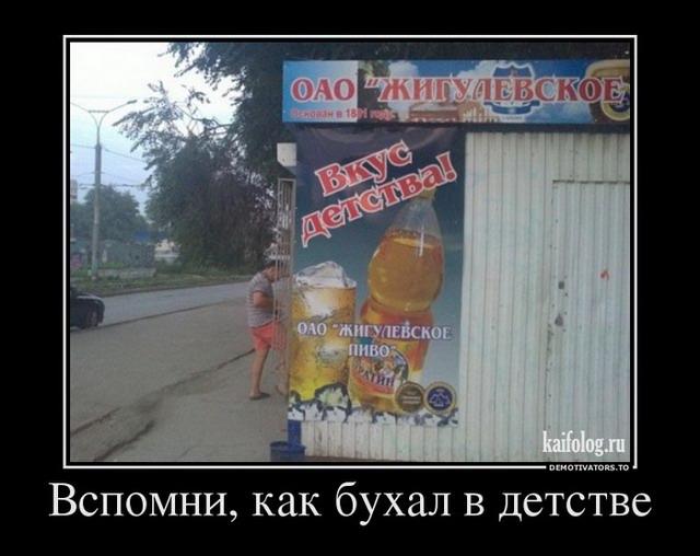 Чисто русские демотиваторы - 101 (50 фото)