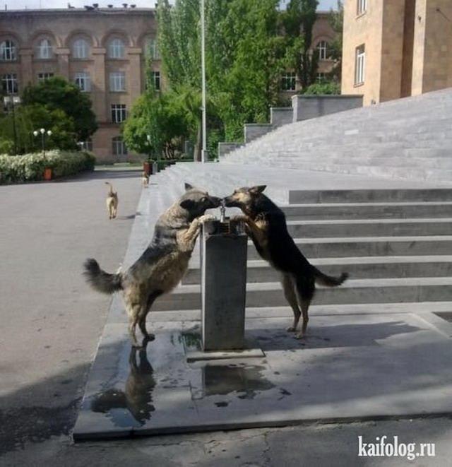 Фотоподборка недели (21 - 27 мая 2012)