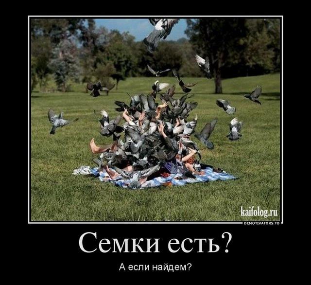 Демотиваторы - 134 (40 фото)