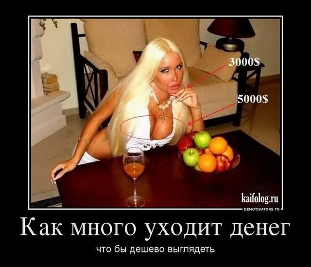 Демотиваторы - 139 (40 фото)