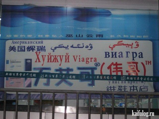 Русский язык в Азии (55 фото)