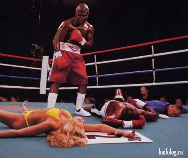 Прикольные боксеры (50 фото)