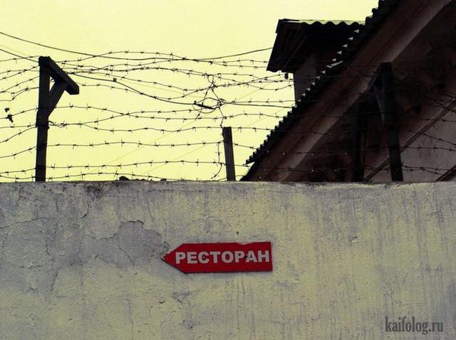 Чисто русские фото. Подборка-155 (95 фото)