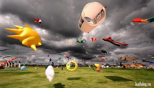Фотоподборка недели (27 августа - 2 сентября 2012)