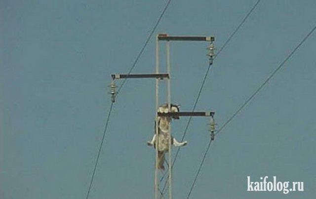 Приколы про электричество (55 фото)