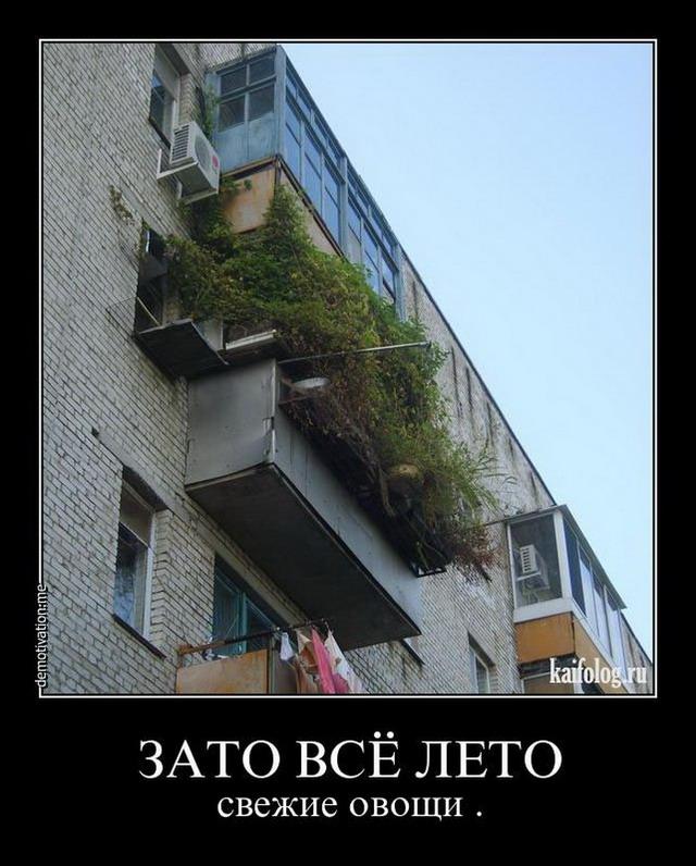 Чисто русские демотиваторы - 117 (65 фото)