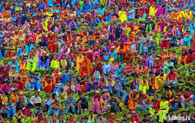 Фотоподборка недели (3 - 9 сентября 2012)