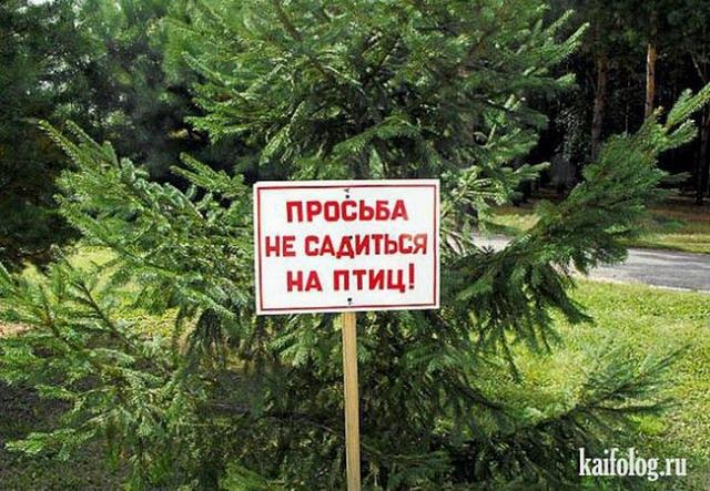 Чисто русские фото. Подборка-160 (90 фото)