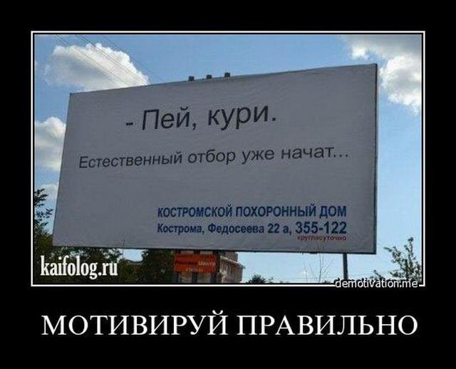 Чисто русские демотиваторы - 120 (45 фото)
