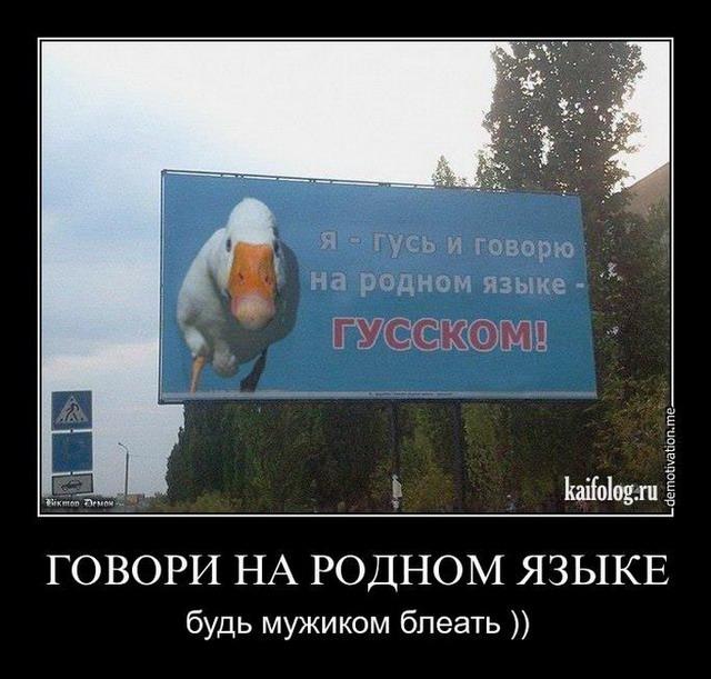 Чисто русские демотиваторы - 121 (50 фото)