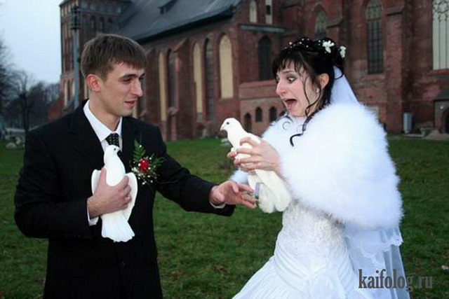 Свадебные приколы 65 фото