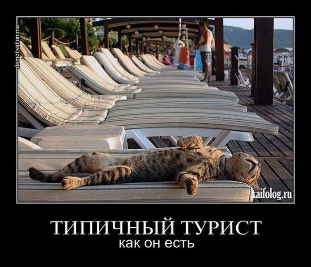 Демотиваторы - 151 (60 фото)