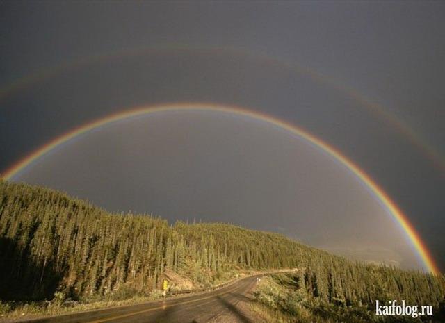 Фотоподборка недели (8 - 14 октября 2012)
