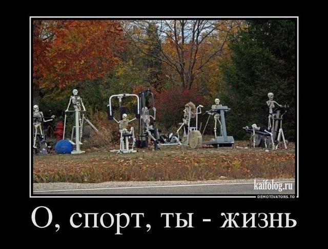 Демотиваторы - 154 (40 фото)