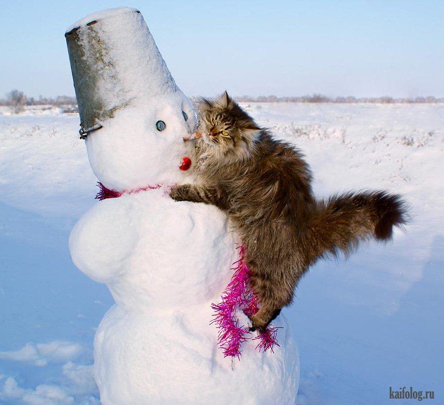 считается картинки про уход зимы прикольные поселка создание