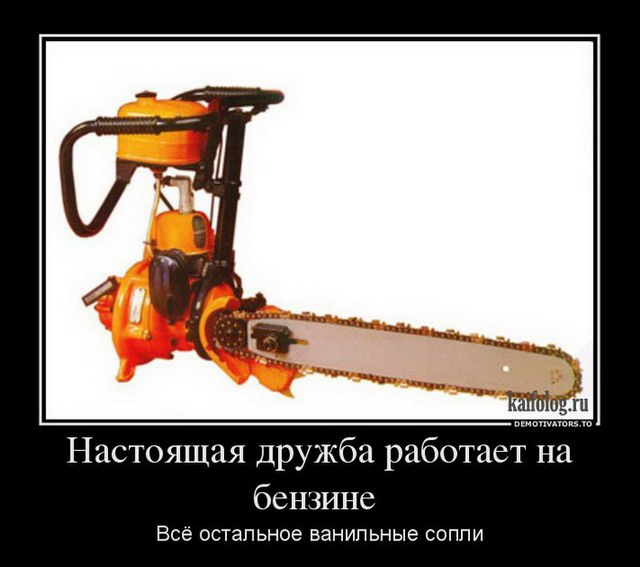 Демотиваторы - 155 (45 фото)