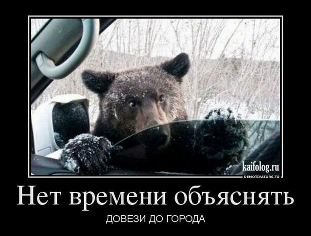Чисто русские демотиваторы 127 50 фото