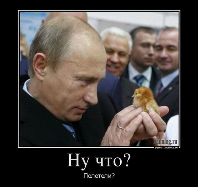 Россия собирается восстановить авиасообщение с Египтом - Цензор.НЕТ 8328