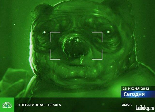 TV приколы. Часть-3 (35 фото + видео)