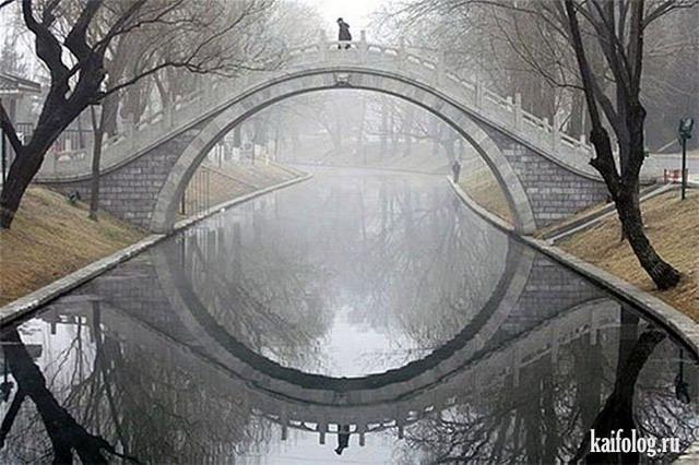 Оптические иллюзии (60 фото)