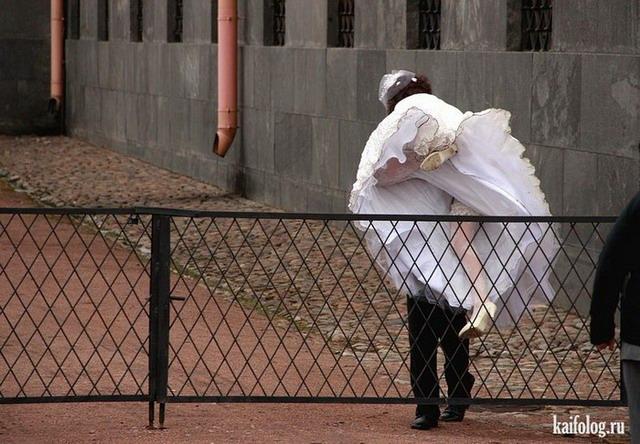 Свадебные приколы 2012 года (55 фото)